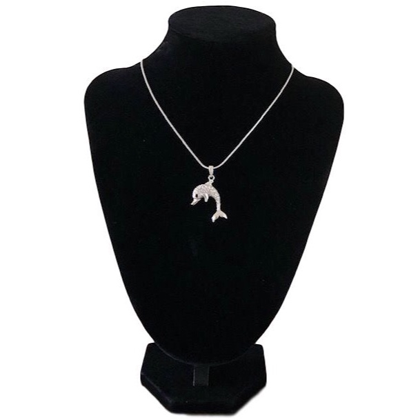 Dolphin Necklace with Earrings